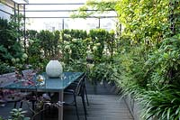 Dining area in corner of roof garden, screened by plants such as Hydrangea 'Limelight', decked surface with trough planters in same material filled with shrubs and perennials such as Edgeworthia and Agapanthus. In foreground on left purple shrub Loropetalum 'Black Pearl'.