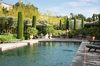 Swimming pool with topiary. The garden focuses on perfumed evergreens - pitosfori, olive trees, oleanders and lonicera nitida.