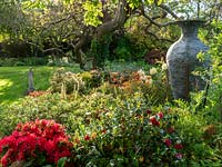 Central bed with giant vase and red and white Azaleas.