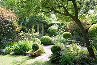 Shaded small town garden with Buxus - Box - topiary, mixed beds and a summerhouse
