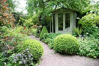 Shaded small town garden with mixed beds with Buxus - Box - topiary near gravel path to summerhouse