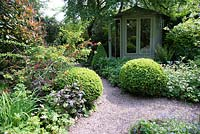 Shaded small town garden with mixed beds and Buxus - Box - topiary near gravel path to summerhouse