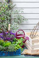 Materials and tools required to make an edible crate planter