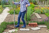 Woman using her heal to firm in standing deadwood into garden