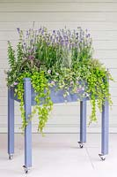 A raised planter on casters planted with herbs and flowers