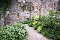 Sunlight shafting down through the castle ruin to beds, plants include Kirengeshoma palmata, Hakonechloa macra and ferns