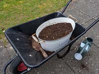 Use old containers to plant a wild flower garden.  Old  container full of compost ready to plant with wildflower seeds. The container is resting in a wheelbarrow