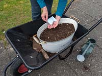 Use old containers to plant a wild flower garden.  Planting wildflower seeds in an old container resting in a wheelbarrow