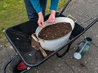 Use old containers to plant a wild flower garden.  Sewing wildflower seeds in an old container that is resting in a wheelbarrow