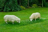 Sheep sculptures grazing on lawn - Open Gardens Day, Kelsale, Suffolk