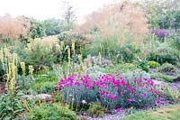 Colourful flowering perennial border at  Bluebell Cottage Gardens, Cheshire, UK