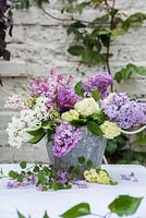 Lilac - Syringa and viburnum opulus displayed in old bucket