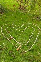 Step by step How to plant a snowdrop heart -string outline of heart on ground