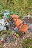 Materials, tools and plants for creating a succulent tower