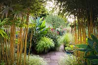 Stands of Phyllostachys aureosulcata f. spectabilis frame a view into the sunken garden, full of lush plants in containers including Hakonechloa macra 'All Gold', Dahlia 'Bishop of Llandaff', Canna iridiflora and pennisetums