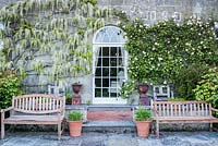 A door framed by climbing white wisteria and a rose with benches, urns and roses