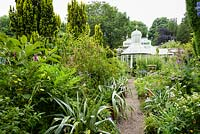 A path edged with silvery astelias leads towards a rare Mackenzie and Moncur glasshouse in the walled garden in June