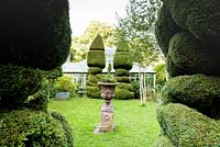 Topiary and decorative urn in front of glasshouse in the walled garden in June