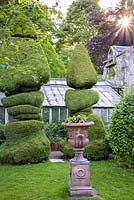 Topiary and an urn in the walled garden