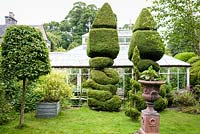 Topiary and decorative urns with a rare Mackenzie and Moncur glasshouse behind in the walled garden in June