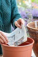 Woman lining a large plastic pot with newspaper.
