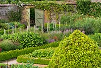 A traditional walled  gardens at West Dean is planted up with a variety of flowers grown for cutting, including: Penstemon 'Garnet', Marigolds, Calendula sp,  dahlias and Monkshood - Aconitum napellus 'Album'. The flowers are grown in beds edged with clipped box hedges.