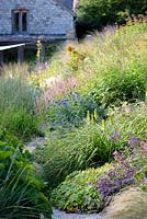 Herbaceous perennials and grasses including Kniphofia 'Percy's Pride', Persicaria amplexicaulis 'Rosea' and Echinops ritro 'Veitch's Blue' in densely planted borders at Am Brook Meadow, Devon in August