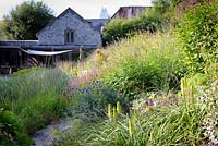 Herbaceous perennials and grasses including Kniphofia 'Percy's Pride', Persicaria amplexicaulis 'Rosea', Eryngium giganteum and Echinops ritro 'Veitch's Blue' in densely planted borders at Am Brook Meadow, Devon in August