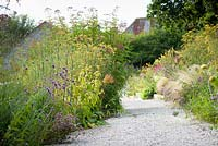 A gravel path between borders planted with a mix of herbaceous perennials and grasses including Verbena bonariensis, Phlomis russeliana, Stipa tenuissima and bronze fennel at Am Brook Meadow, Devon in August