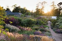 View down double herbaceous borders in the walled garden at sunset.