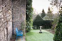 Blue bench beside Daphne bholua 'Jacqueline Postill' in formal garden of the Old Rectory, Netherbury, UK.
