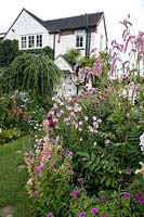 Profusion of pink flowers in beds in front of house