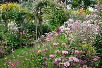 Profusion of flowers in a pink themed border, rustic arch with Clematis beyond
