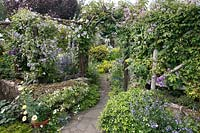 Cottage garden full of flowers, view through arch with Clematis flowers with trellis on either side