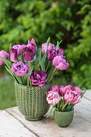 Spring arrangement in two green glazed pots with mixed pink Tulips