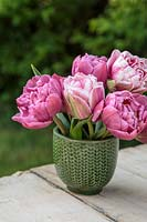 Spring arrangement in green glazed pot with mixed pink double Tulips
