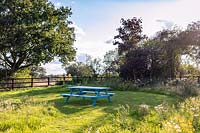 Bright blue picnic bench in meadow