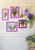 Purple themed wall display including birdhouse, driftwood fish, pots of Violas and bunches of drying flowers