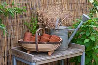 Trug filled with small vintage terracotta pots, on a potting table beside a watering can filled with allium and poppy seedheads.