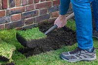 Person using a sharp spade to lift the turf, to prepare a base for the raised bed.