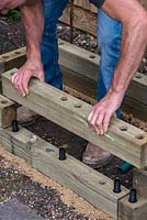 Man building timber raised bed: building up layer by layer, using the dowels to hold the timbers in place.