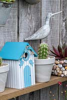 An ornamental bird box amidst Cereus cacti and Echeveria succulents