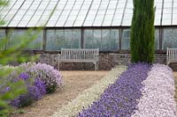 Wooden seat in front of glasshouse overlooking mixed lavender. Downderry Lavender Farm, Kent