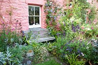 Colourful summer display of Erigeron, Eryngium, Salvia and Clematis in front of cottage