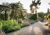 View across wide path to colonnade and border as sun sets, plants include Nepeta - Catmint - and Salvia