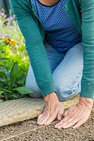 Woman using her hands to gentle firm around sown kalette seeds