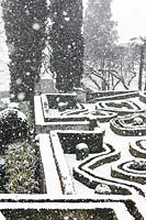 Topiary hedging covered in snow