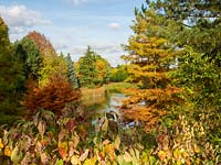 Looking across the lake at Bodenham Arboretum, with lots of autumn colour and a blue sky.