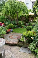 An 11m x 4m town plot has interlinked circles of paving and grass, leading to a rear deck shaded by a birch tree, Betula pendula. Pots of small-leaved holly balls,  Ilex crenata 'Kinme', add a formal touch beside winding beds of allium, peonies and roses.