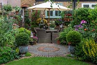 In small town garden, view back to patio by house clad in  Clematis 'Madame Julia Correvon', and shelving with  pots of nemesias or surfinias. RH bed planted with peonies, roses, alliums and yellow loosestrife.  In pots, small-leaved hollies,  Ilex crenata 'Kinme'. Fuchsias in pots on left fence panel.